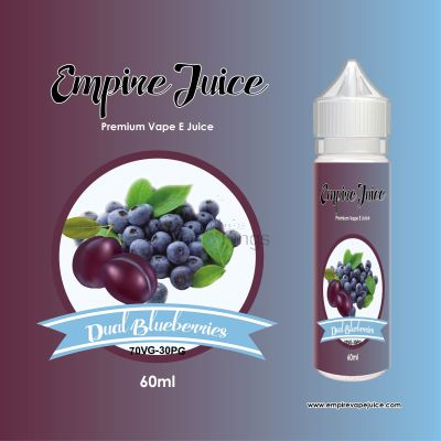 Dual Blueberry Eliquid Nic
