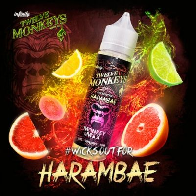Harambae By 12 Monkeys Vapor